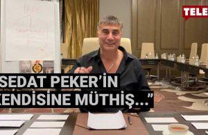 Emre Kongar, Sedat Peker'in son videosundaki en önemli mesajı açıkladı | 18 DAKİKA