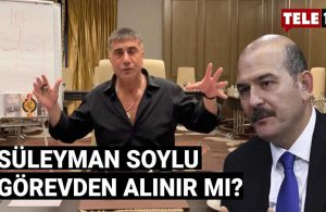 Hukukçu Ersan Şen'den 'Sedat Peker' çıkışı: Yarın itibarıyla yapılması gereken….