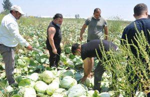 Tarsus Belediyesi'nin dayanışma ağına üretici de destek veriyor