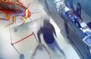 Çete üyeleri restorana hamam böceğiyle saldırdı