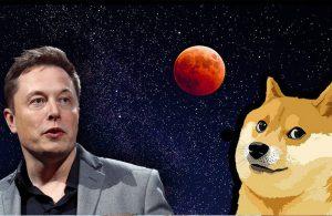 Elon Musk'a Doge şoku