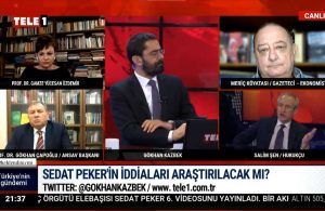 Sedat Peker'in videoları neden bu kadar izleniyor? Salim Şen açıkladı