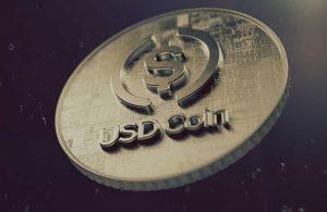 Kripto borsasında tarihi gün! Rekor seviyede dolar coin basıldı