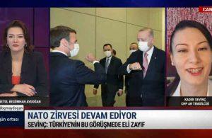 CHP AB Temsilcisi Sevinç: ABD yapılacak olan görüşmeye Türkiye kadar önem vermiyor