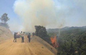 'Bingöl yangını kontrol altına alındı diyoruz ama yanacak bir şey kalmadı'