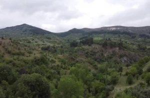 Ormanlarda fotoğraf ve yayın 'izne' bağlandı
