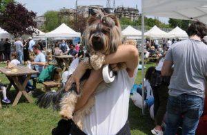 Pet Festivali Türkiye'de ve dünyada bir ilke imza atıyor