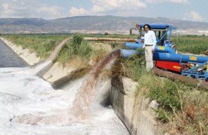 DSİ su vermedi, üretici zehirli su ile tarla suladı