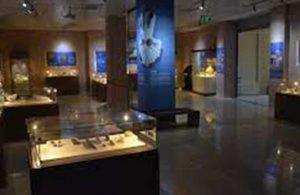 Batman Müzesi'nde kayıp sikkeler için soruşturma açıldı