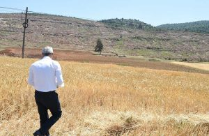 Tarsus Belediyesinin tarlada izi vardı, harmanda yüzü oldu