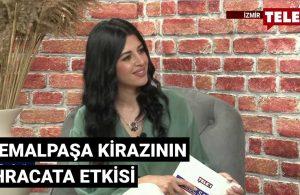 Türkiye'de kiraz üretimi
