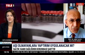 Prof. Dr. Ahmet Saltık'tan korkutan açıklama: Yeni varyantın adı…