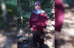 Piknikte odun toplamaya çıkan kadın kayıp