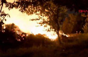 Ataköy'de ağaçlık alanda yangın