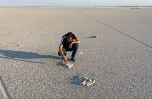 Pakdemirli'den flamingo ölümlerine ilişkin açıklama