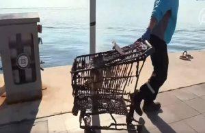 Denizden çıkanlar kirliliği gözler önüne serdi: Klozet, mangal, market arabası…