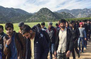 Taliban kaçışı sürüyor: Akın akın Türkiye'ye geliyorlar