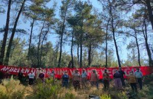 Akbelen Ormanı'nda kıyım başladı, köylüler nöbette