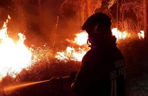 Güney Avrupa'da orman yangını başladı: Aşırı sıcaklar sebebiyle uyarı verildi
