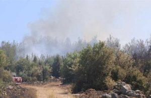 İzmir'de orman yangını: 5 hektarlık alan zarar gördü
