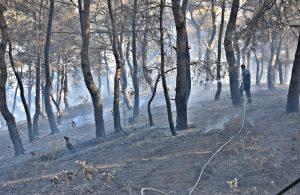 Otomobilde çıkan yangın ormana sıçradı, 3 hektar alan küle döndü