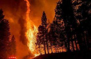 Fransa'da yangın sürüyor: Binlerce kişi tahliye edildi
