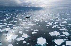 İklim krizi: 'Akdeniz, önlem alınmazsa yükselmeye devam edecek'