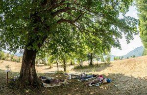 Karadağ'da tembellik yarışması: Ayağa kalkmak yasak, ödül 300 euro