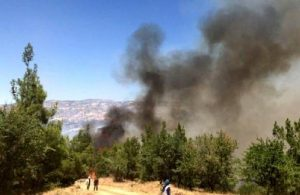 Denizli Buldan'da orman yangını