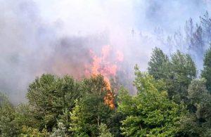 Karabük'te 2 gün sonra yine orman yangını