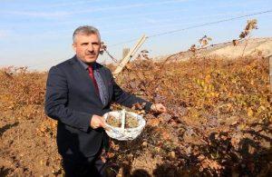 AKP'li başkandan, cezaevinde yattığı arkadaşına 'parke taşı' ihalesi