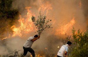 Yangın felaketinde 10. gün: Manavgat ve Gündoğmuş yangınları kontrol altında