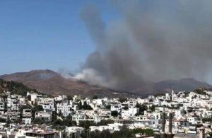 Bodrum'da yangın: Alevler rüzgarın etkisiyle büyüyor