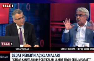 TELE1'e konuk olan HDP'li Sancar'dan 'sabotaj' iddialarına yanıt