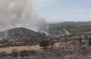 Ormanlar yanıyor, yapılaşma endişesi büyüyor: Yanan ormanların üç katı alan orman dışı faaliyetlere açıldı