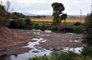Kuraklığın faturası! Tunca Nehri dip seviyeye indi