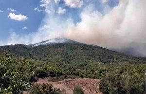Tunceli'de yangın: Havadan müdahale ediliyor
