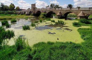 Tunca Nehri çöple kaplandı, Meriç Nehri arsaya döndü