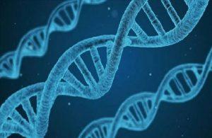 Genetik kodu araştırması: Türkler hangi toplumlarla benzerlik gösteriyor?