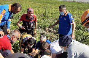 Macaristanlı kadın paraşütle patates tarlasına düştü